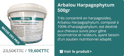 Harpagophytum pour chevaux
