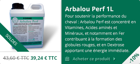 Arbalou Perf Soldes