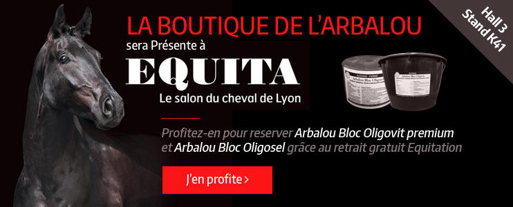 La boutique de l 39 arbalou les actualit s for Salon du cheval lyon 2017